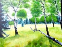 Aspens in a Meadow - Acrylics