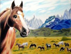 Horses and Mountains - Colored Pencil