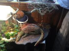 Crochet Dragon Wire Sculpture